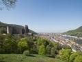 Schloss mit Neckarblick Heidelberg